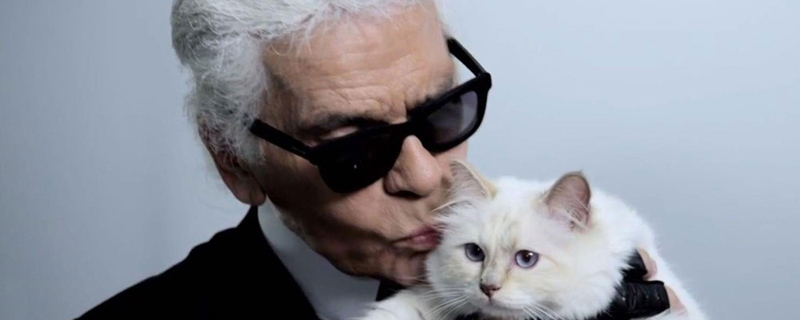 karl-lagerfeld-launches-new-accessories-inspired-cat-12308.jpg